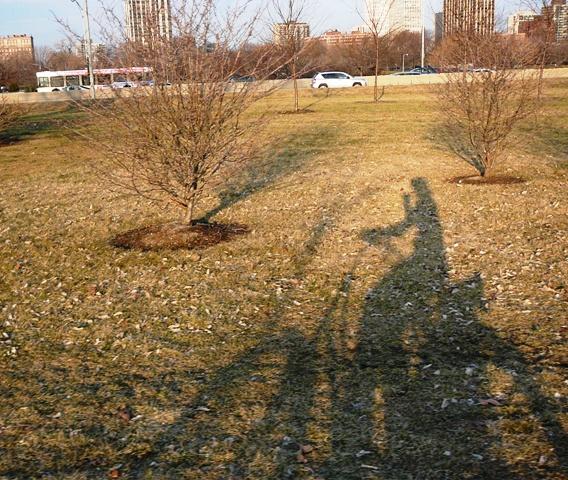 3-17-shadow