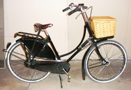 Rear Rack with Straps, Front Basket