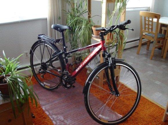 Carolyn's Bike - Pura Vida