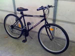 My mom's new bike