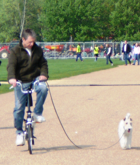 Walking the dog on the bike all day 'cause the filth took away my license...