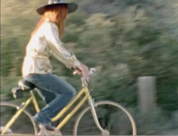 Cycle Chic Tori 2