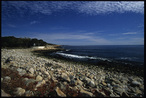 Marblehead Beach (not my photo) - I remember digging for mussels here as a kid