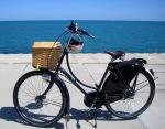Azor Oma - Workcycles