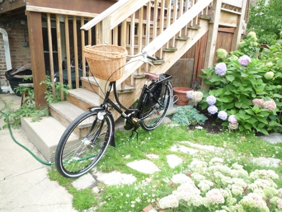 New Workcycles Oma