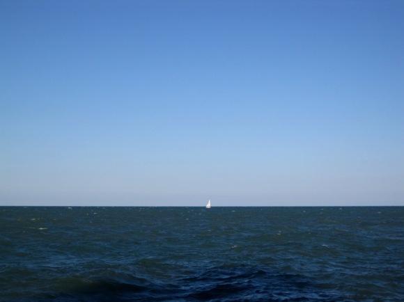 Sailboat!