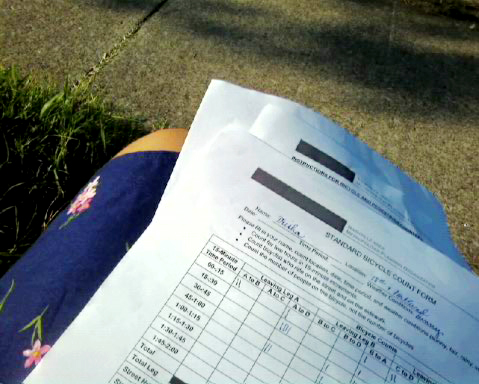 Count sheet