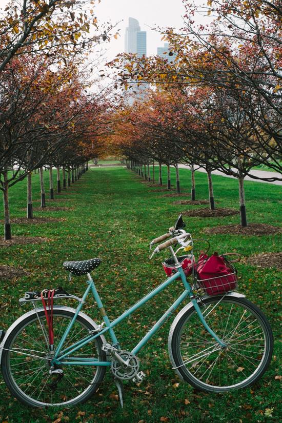 fall_bike-7